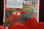 East Grinstead Town Council News 1914-1918 Poppies.