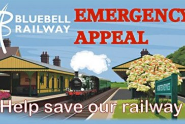 The Bluebell Railway needs your help.