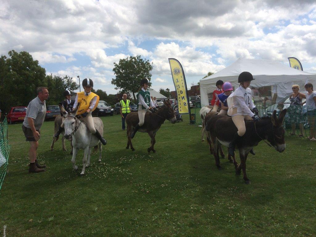 Lions Donkey Derby – TBC